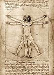 Нажмите на изображение для увеличения Название: Витрувианский человек.jpg Просмотров: 8 Размер:80.2 Кб ID:624